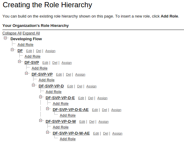 Role Hierarchy New