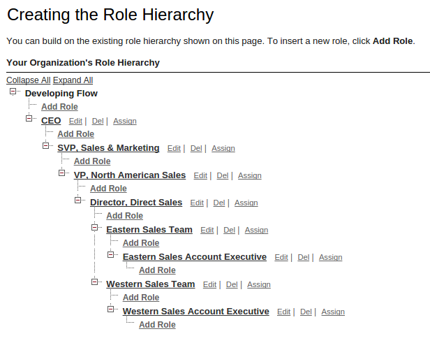 Role Hierarchy Old